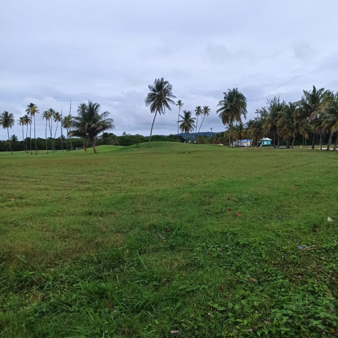 Prime land, Tobago Plantations