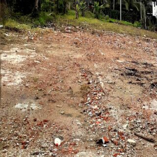 Land for Sale on Bejucal Road, Cunupia