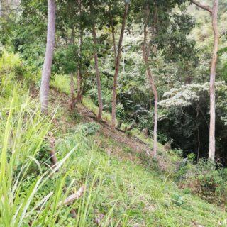 Residential Land, Maracas Gardens, St. Joseph