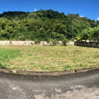 SANTA CRUZ FLAT LAND FOR SALE IN A LOVELY GATED COMMUNITY!!!