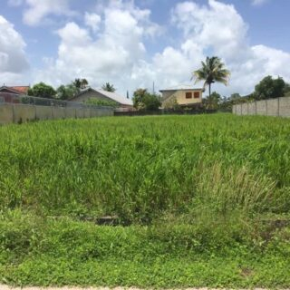 FOR SALE – Chaconia Street, Cunupia – Freehold residential land