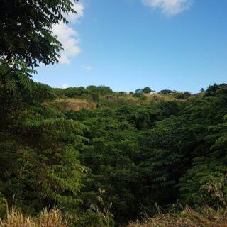 Belmar Trace, Buccoo, Tobago Land for Sale