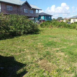 Caroni Land – Reform Phase 4, Gasparillo
