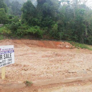 Acono Gardens, Maracas Valley mainly flat land – $750,000.00