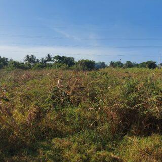 ARANGUEZ SOUTH PRIME FREEHOLD COMMERCIAL LAND FOR SALE!!