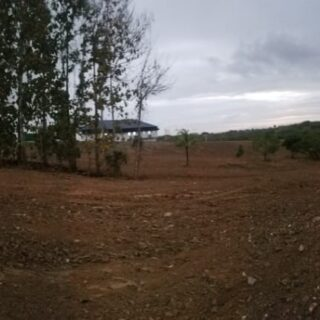 5+Acres for Sale, Freeport Todds Road