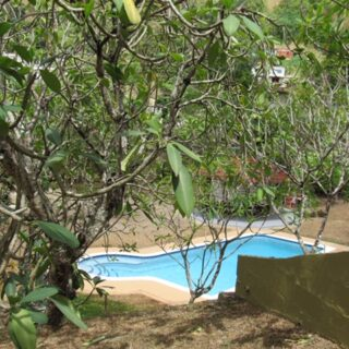 San Diego, Early Diego Martin for Rent
