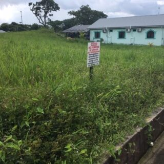 FOR SALE –Le Blanc Trace, Todd Road, Caparo – Freehold residential land with approvals