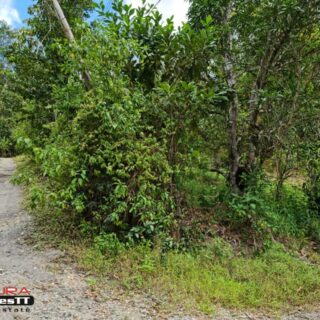 Maracas Valley – Land for Sale