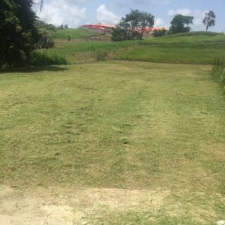 Scenic Land in Freeport Todd's Road for Sale 9445sqft