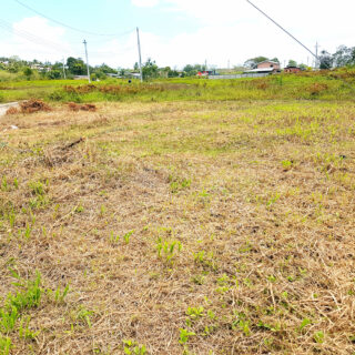 Approved Residential Lot, Woodland