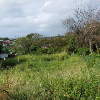 Land For Sale – Pond Street, Dumfries Road, La Romaine
