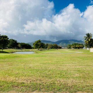 Land for Sale Millennium Golf Course