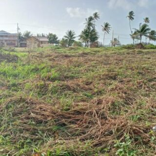 Land For Sale – Calypso Road, Manzanilla
