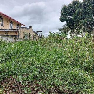 Land for Sale – Tarouba Road, Marabella