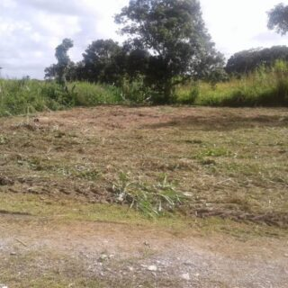 FOR SALE – Toby Trace, Fyzabad – Freehold land in residential area