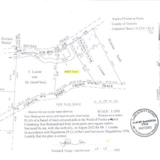 FOR SALE – Lightbourne Road, Perry Crown Trace, Caratal, Gasparillo – Estate land
