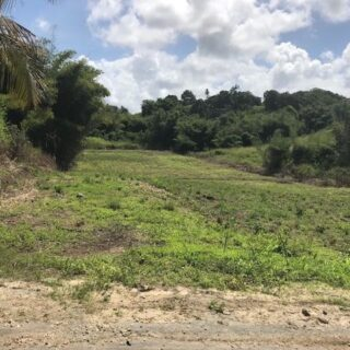 FOR SALE – Road Reserve, Hakim Avenue, Mandigo Road, Princes Town – Freehold land with approval for residential lots