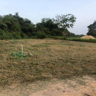 Rambert Land – Sirju Trace – Asking Price – $1,000,000