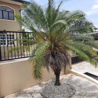 FOR RENT: EDINBURG GARDENS ORCHID DRIVE CHAGUANAS 2 BEDROOM UNFURNISHED APARTMENT
