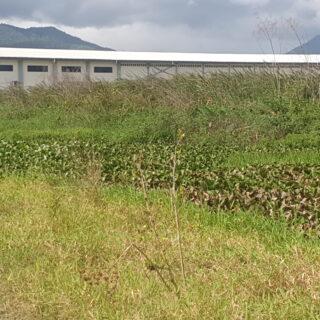 El Socorro 6.45 Acres – Land