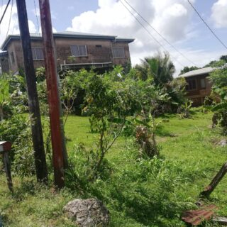 1 Lot of Flat Land in the Heart of Mayaro – $350,000.00