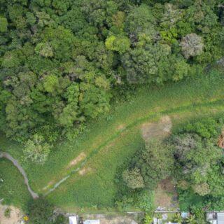 5.88 acres for residential development in Sangre Grande