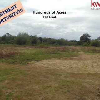 Over 200 Acres of Freehold land – Sangre Grande for Agriculture Projects / Residential or Commercial development / Quarrying