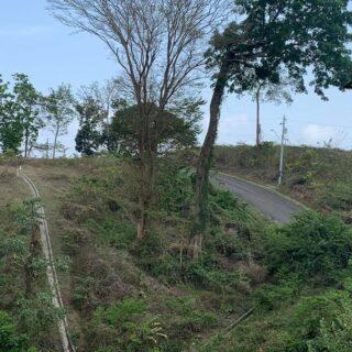 Tobago, Hope Estate Residential