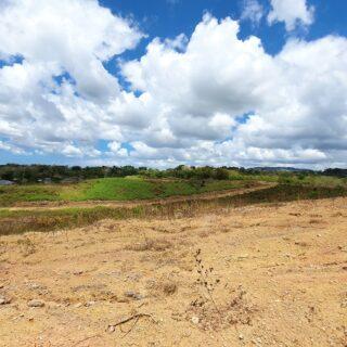 Williamsville Land For Sale