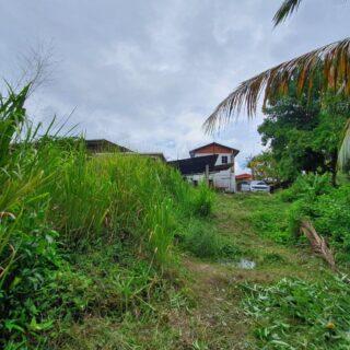Development land Arima