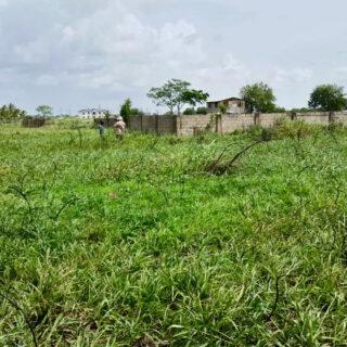 Land for sale – Freehold – Kelly Village