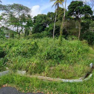 Tobago, Buccoo, Tamarind Park, Phase 1