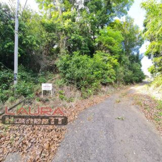 Salybia Residential Lots for sale