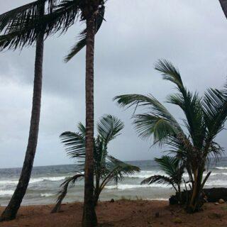 Large Beachfront Mayaro Parcel of Land – $775,000.00.