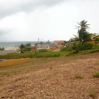 Land for Sale in Mayaro