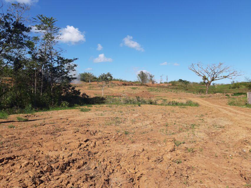 Pinecrest Heights Land Development