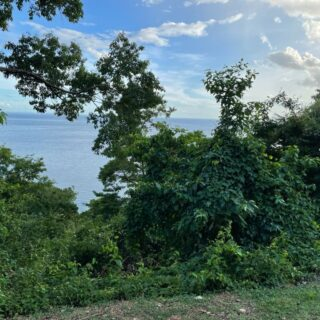 LAND FOR SALE-THE BUOYS-CARANAGE -IN A COMPANY,S NAME