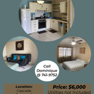 One Bedroom Apartment for Rent – Cascade