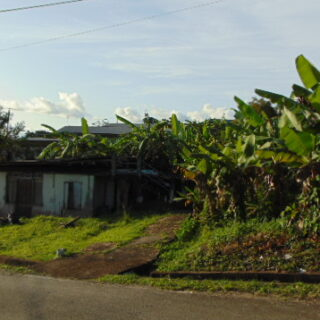 LAND FOR SALE: MANAHAMBRE, PRINCESS TOWN