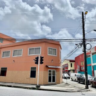 Dundonald Street Port of Spain for Rent