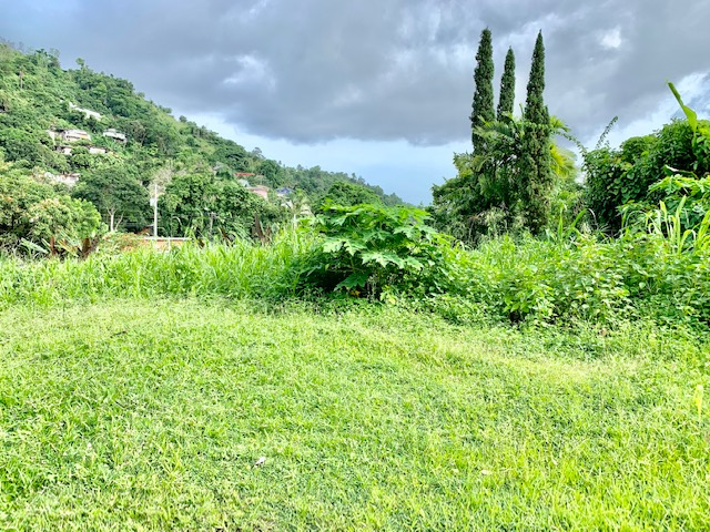 Petit Valley Land for Sale