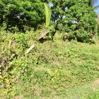 Land for sale – Toco