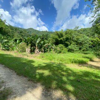 Land for sale: Las Hermanas Estate, Santa Cruz 2M