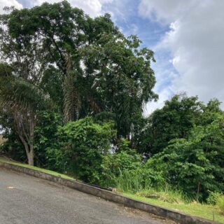 LAND FOR SALE: 2.25 M
