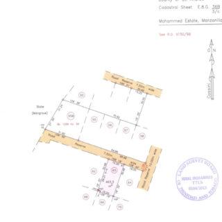 Mohammed Estate, Manzanilla – Land for Sale