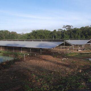 Poultry Farm for Sale