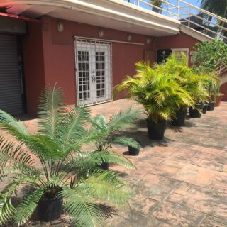 Commercial Rental in Piarco (Ground Floor)