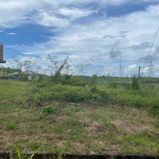 Caroni Land For Sale