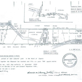 Land For Sale – Off Beckles Avenue, Penal